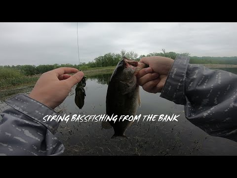 SPRING BASS FISHING FROM THE BANK▎BURKE LAKE