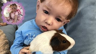 Обложка на видео - REBORN TODDLER MIKEY OVERCOMES FEAR OF ANIMALS! *Fun Friday*