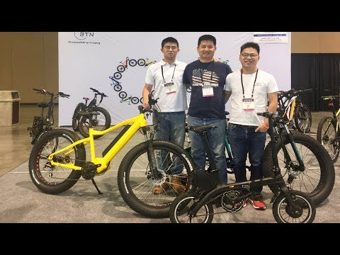 BTN Affordable White-Label Ebikes for Independent Electric Bike Dealers #AD