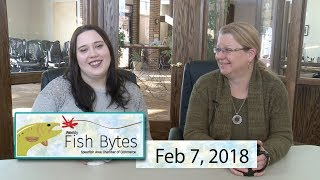 Download Video Spearfish Chamber - Video Fish Bytes Feb. 7, 2018 MP3 3GP MP4