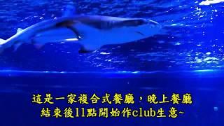 VirtualDJ(中文)教學:(79) Shark Show新夜店~Trap Music 狂~