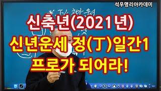 신축년(2021년) 신년운세- 정화(丁火)일간1, 프로가 되어라! (석우명리아카데미)