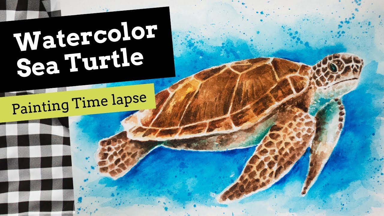 How To Paint A Watercolor Sea Turtle Turquoisechallenge Youtube