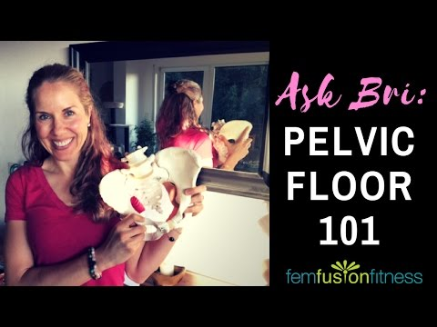 Front vs. Back Kegels + What Does the Pelvic Floor Look Like?