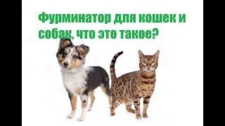 Фурминатор для кошек и собак, что это такое?