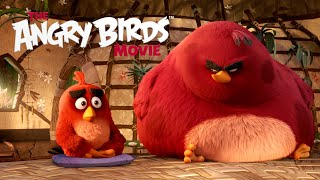 The Angry Birds Movie - TV Spot: New Year's Resolutions