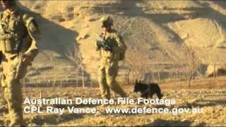 Visit to Patrol Base Wali