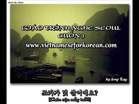 Giáo trình nghe Seoul Cuốn 3 Bài 16, bài 17 và bài 18 [www.vietnameseforkorean.com]