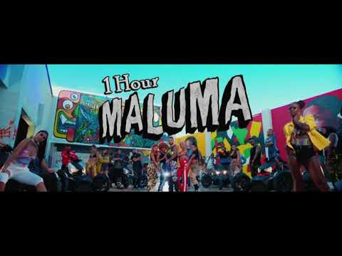Maluma – HP [1 Hour] Loop