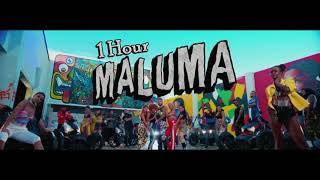 Maluma - Hp 1 Hour Loop