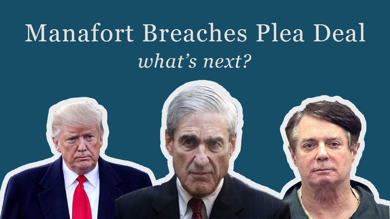 Manafort Breaches Plea Deal: whats next?