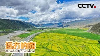 《远方的家》 20190716 长江行(12) 金沙江河谷的春天| CCTV中文国际
