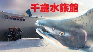 【観光】「サケのふるさと 千歳水族館」 へ行ってきた -Chitose Aquarium-