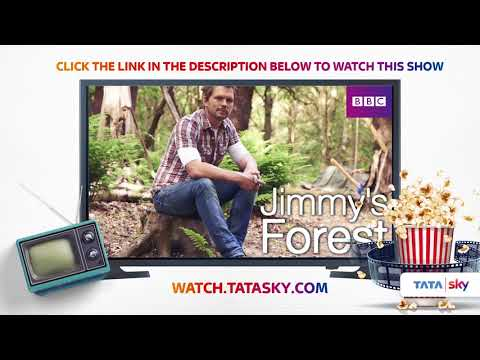 Watch Full Episodes of Television  Jimmy's Forest  Jimmy Doherty  Michaela Furney
