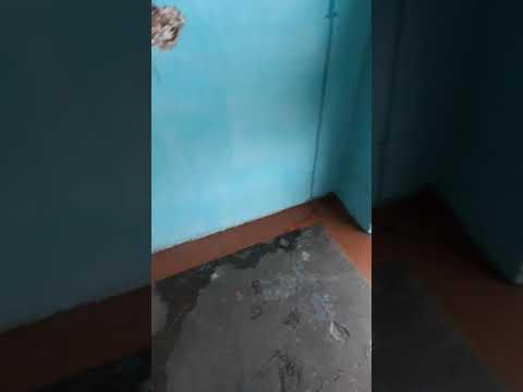 Потоп в пятиэтажке в Могоче 2