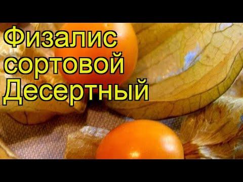 Физалис сортовой Десертный (Desertnyy). Краткий обзор, описание характеристик, где купить семена