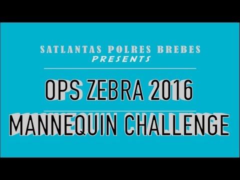 MANNEQUIN CHALLENGE SATLANTAS POLRES BREBES FULL HD
