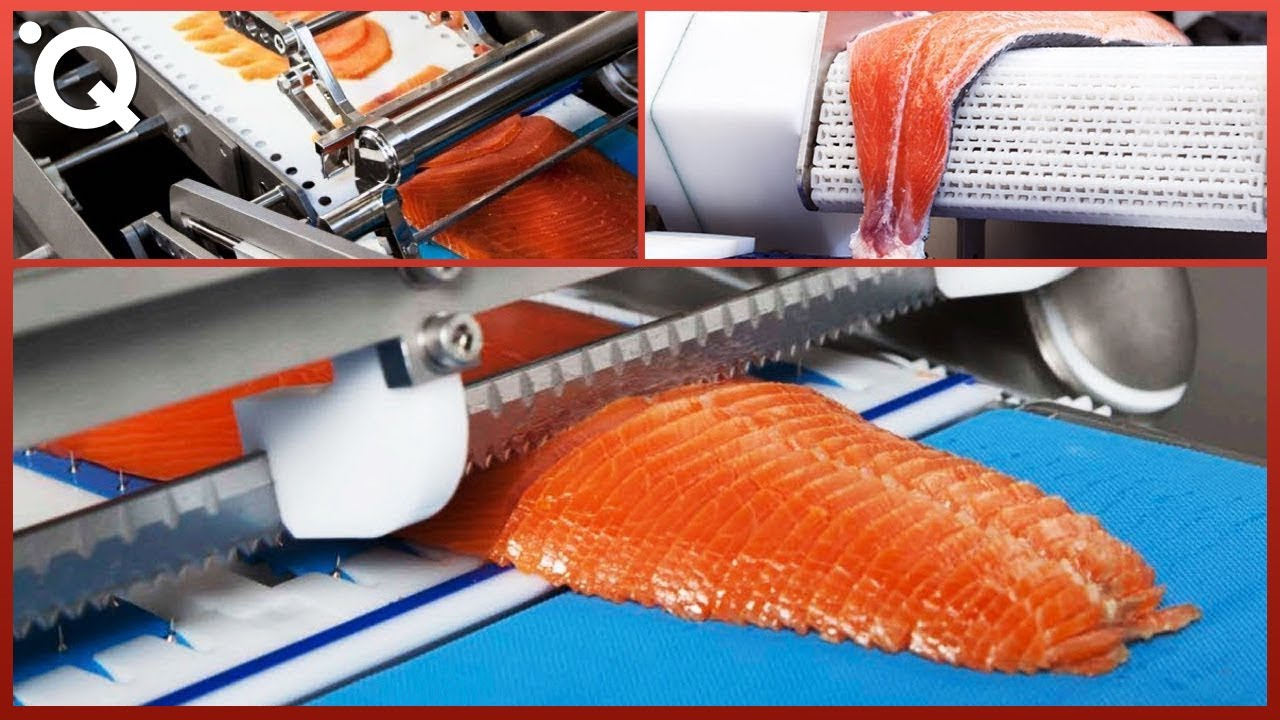 food-industry-machines-that-are-at-another-level