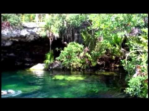 Cenote Cristalino Near Akumal Qr Mexico Youtube