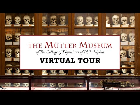 A Virtual Tour of the Mütter Museum