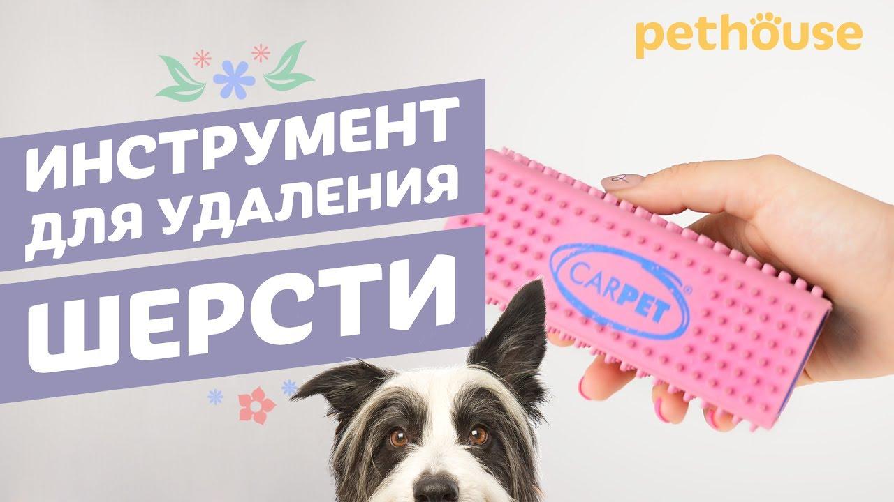 CarPet Pet Hair Remover - инструмент для удаления шерсти с одежды, мебели и ковров | pethouse обзор