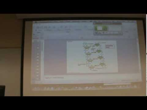 BIO233, Molecular biology of bacteria, part 1, March 6,2014,