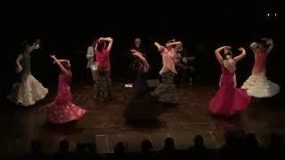 """Cie """" ... y Flamencas"""" : Sevillana"""