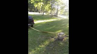 بالفيديو.. يخلع 'جذع' شجرة بسيارته فيحطمها