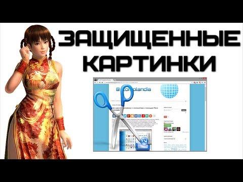 Как сохранить картинку с сайта? | Complandia