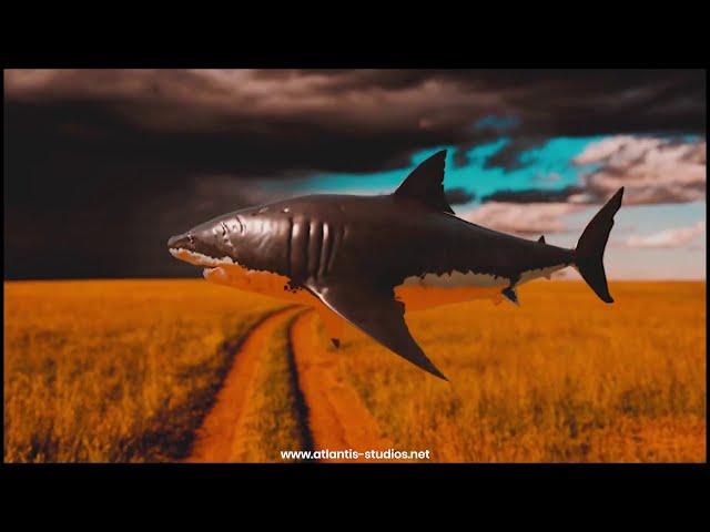 Flying Shark VFX by Atlantis Creative Studios