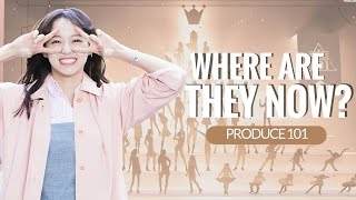 PRODUCE 101: where are they now?  [PART 1]