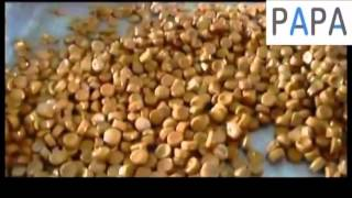 Toffee candy depositing production line - How does  small marshmallow depositor work