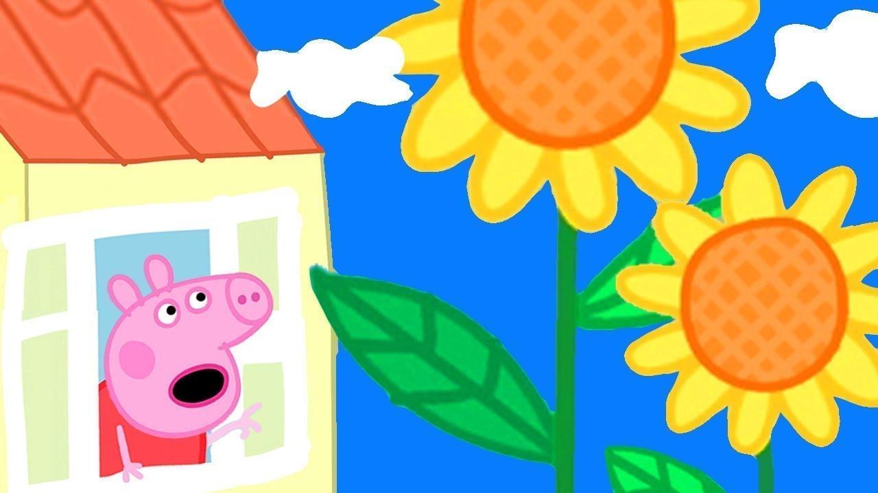 Flores Gigantes ? Peppa Pig Português Brasil | Desenhos Animados