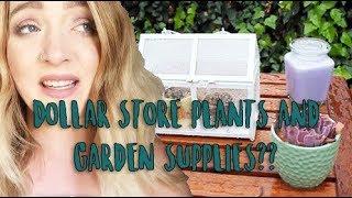 $1 Garden Supplies! Mini Garden Tour