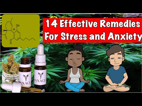 14 Natural Remedies to Reduce Stress and Anxiety