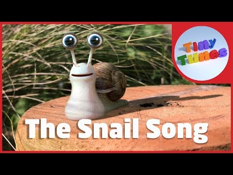The Snail Song | Snail Facts For Kids | Tiny Tunes
