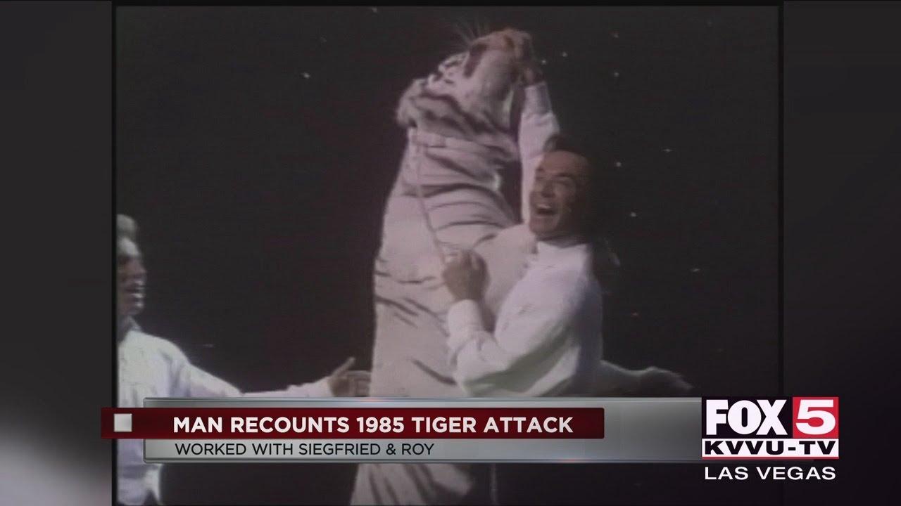 Roy Horn Tiger Attacke