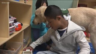 Austin hospital therapy dog helps kids with special needs