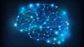 Designing Your Brain With Brain Training.