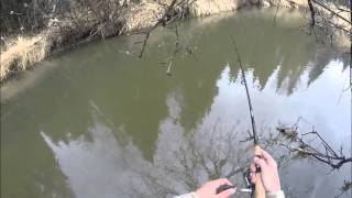 Fishing White Sucker in Northern MN