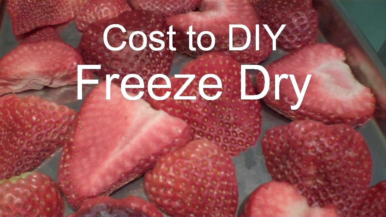 Freeze Dried Strawberries And Costs In A Harvest Right Home