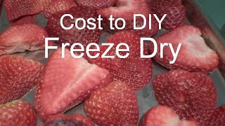 home freeze Freeze Dried Strawberries - and costs - in a Harvest Right Home Freeze Dryer
