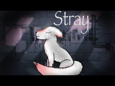Stray GLMM ❤️1000