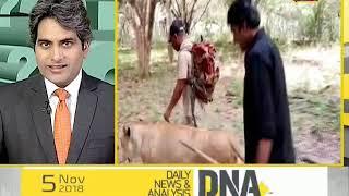 DNA analysis on killing of tigress Avni
