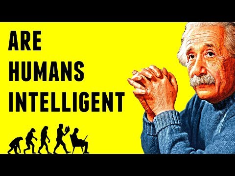Are Humans Intelligent? - The Kardashev Scale Explained