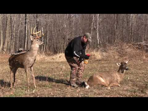 Best Deer Hunting Moment Often is Saying Thank You