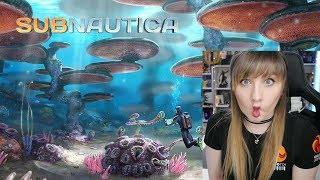 Subnautica (PC) GAMEPLAY