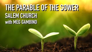 The Parable of the Sower - Meg Gambino - July 12, 2020