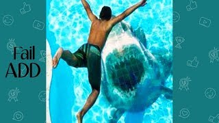 Try Not To Laugh Or Grin : Best Funny Summer Fails Compilation of August 2018 !!