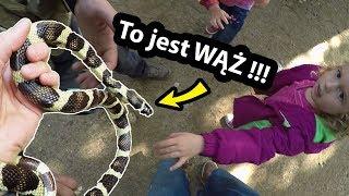 Prawdziwy Wąż  !!! - Trzymam Go w Ręce ... (Vlog #239)